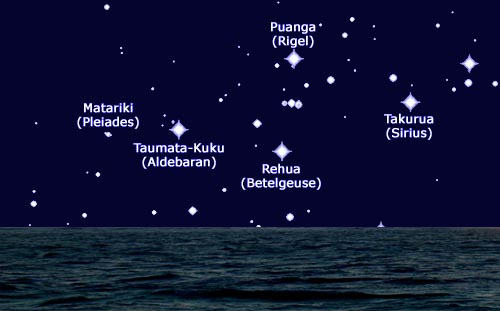Stars marking the Maori New Year.